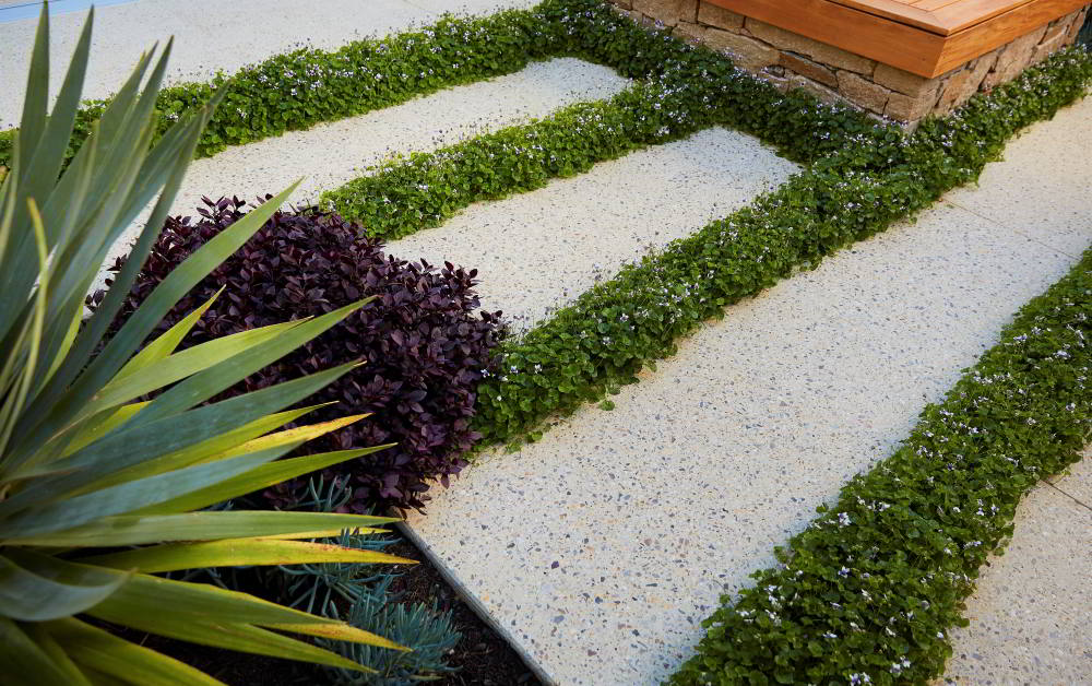 Outdoor paving with landscaping